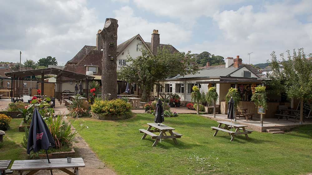 Our large beer garden at the Balfour, Sidmouth